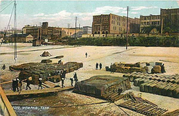 [Image: cobblestone-cotton-1908.jpg]